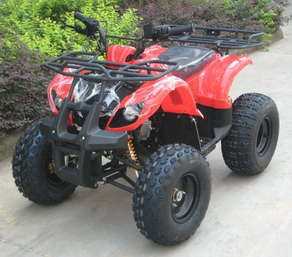 ATV006-1
