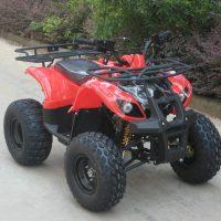 ATV006-2